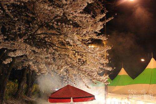 2016 안동 벚꽃축제 야시장에서 먹은 것들