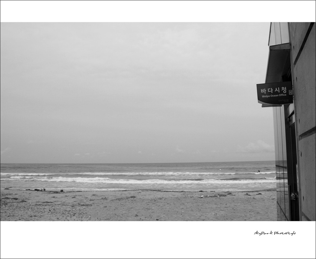 12월의 바다