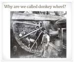 호주사회혁신연수 ⑨ 사회적 기업을 지원하는 Donkey Wheel 재단을 찾아서