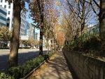 [걷기여행]서울교대 ~ 대법원 ~ 서래마을 몽마르뜨공원 ~ 방배중학교