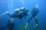 2011 가이아 여름캠프 - 울릉도 다이빙 투어