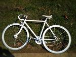 봄날 자전거