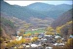 ( 의성 여행 ) 의성 산수유 마을 이야기