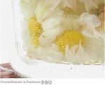 꽃차 효능 - 꽃잎차, 꽃차 종류