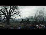 ウィッチャー3 ワイルドハント (The Witcher3 Wild Hunt) 壁紙 画像 (2)