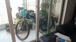 자전거라이딩 준비 - 자전구입완료!