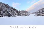 [월명동 사진] 새하얀 눈이 내린 겨울의 모습