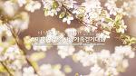 국제위러브유운동본부(장길자회장님) - UCC동영상에 올라온 새생명 사랑 가족걷기대회!!