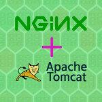 nginx + tomcat 톰캣 설치