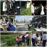생태 징검다리, 하천에서 놀자-5월 하천 생태모니터링, 쓰레기 수거 및 조사카드 작성