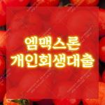 엠맥스론_개인회생대출_개인회생사건번호대출_무방문 당일대출