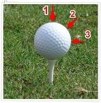 골프공 정확히 바라보면 골프실력 좋아진다