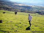 자연의 아름다움과 신비를 품은 피레네산맥