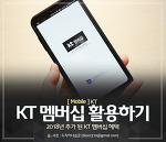 KT 멤버십의 추가 된 혜자 혜택 테마파크와 글로벌 혜택