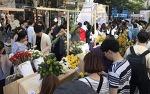 신촌국제꽃시장 2018 가을에 만나는 대국민 꽃감성 프로젝트