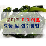 물미역 다이어트 효능 및 섭취방법 알아볼까요?