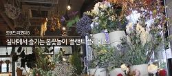 [트렌트리포트B#1] 실내에서 즐기는 봄꽃놀이 '플랜트 플레이스'
