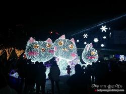 로맨틱 겨울여행~ 고양 호수 꽃빛축제, 일산 호수공원 꽃빛축제 강추!
