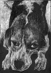 강아지이야기를 위한 왁스페인팅(WAX PAINTING)