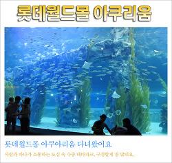 3세 딸과 다녀온 롯데월드몰 아쿠아리움 후기