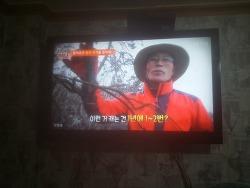 코리아헌터 갯방풍 산원초 회원 활동 tv 조선 기록 사진
