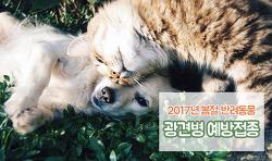 2017년 강아지, 고양이 광견병 예방접종 실시! 광견병주사 시기, 비용 안내!