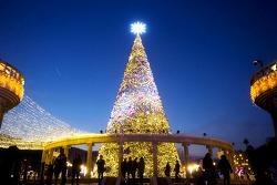 화려한 빛의 향연, 에버랜드 겨울축제 오픈