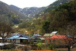 [경북 문경] 나의 살던 고향은 꽃 피는 산골