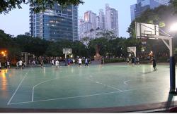 바닥을 기는 엘리트 농구, 열기를 뿜어내는 길거리 농구