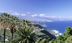 북아프리카의 낙원 테네리페 어떻게 갈까: Tenerife, paradiso dei pensionati