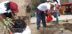 4월 식목일이 기다려져요~ ^^ 국제위러브유운동본부(장길자 회장) 페루 리마 지역에서 나무심기 캠페인!!