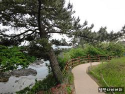 경주 천연기념물 양남 부채꼴 주상절리[경주산책로,경주가볼만한곳]