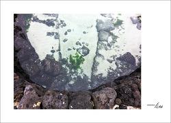 [제주] 바닷물과 민물이 만나는 곳 : 함덕서우봉해변