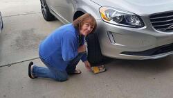 쥐 때문에 자동차에 손상이??