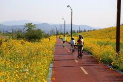 자전거사고를 대비한 자전거보험(일상생활배상 책임보험) 가입
