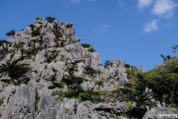 오키나와 북부, 한창 개발이 진행중인 대석림산