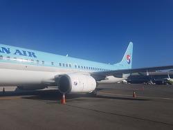 KE1406 PUS-ICN 부산/김해-인천 대한항공 내항기 이코노미 탑승기