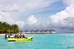 아름다웠던 몰디브 리조트, 프라이빗한 해변에서 먹방의 추억