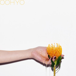우효 - 꿀차 듣기#가사#뮤비