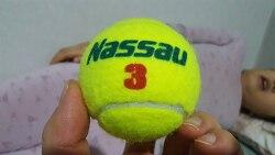 마사지볼 테니스공 하나면 충분?
