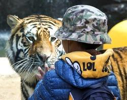 에버랜드, 생태형 동물원으로 변화하다!