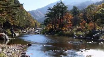 한국의 강 (4부작)