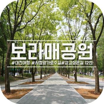 대전 보라매공원, 걷기 좋은 가로수길 12선
