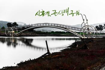 시흥갯골생태공원, 캠핑장도 있는 도심속의 바닷길이랍니다.