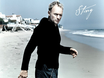 [60] The Best Of Sting - 스팅