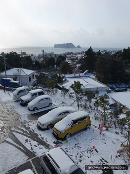 서귀포에도 눈이 펑펑 내렸어요!