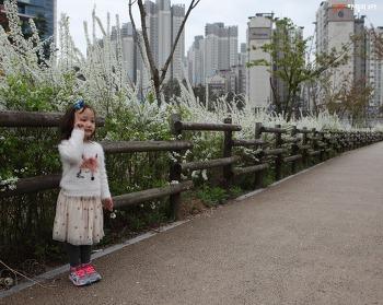 시크릿쥬쥬화장대, 모델이 되고 싶어하는 여자아이 어린이날 선물