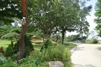 잔디밭이 너무 아름다운 양평수목원캠핑장