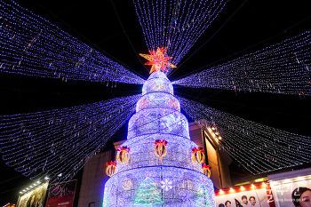 2016 부산크리스마스트리문화축제
