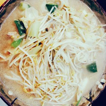 국수나무,국수,만두